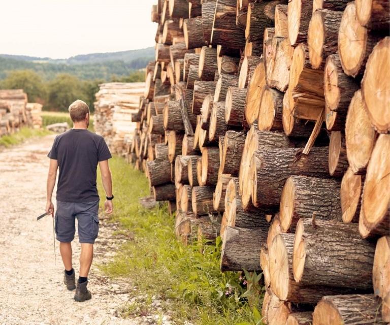 Bauernhofer Holz - Dienstleistungen