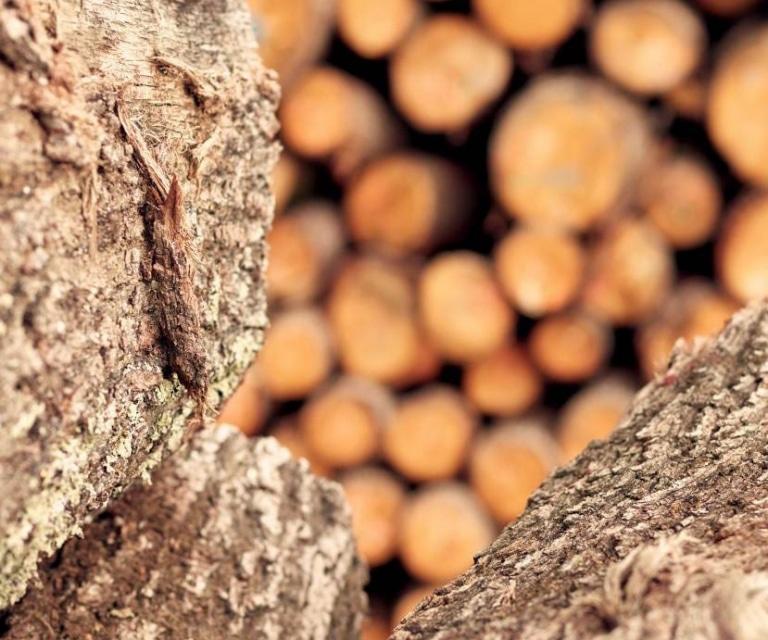Bauernhofer Holz - Rundholz